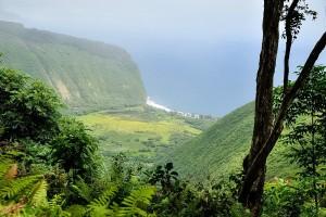 horseback big island hawaii