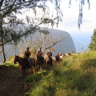 Waipi'o Ridge Stables – Horseback on the Big Island of Hawaii