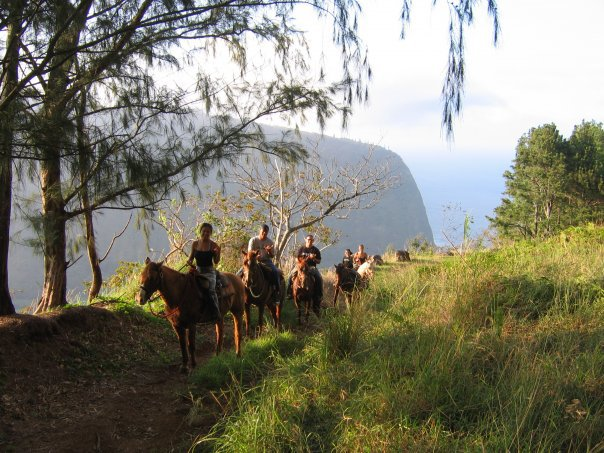 waipi'o ridge stables horseback hawaii