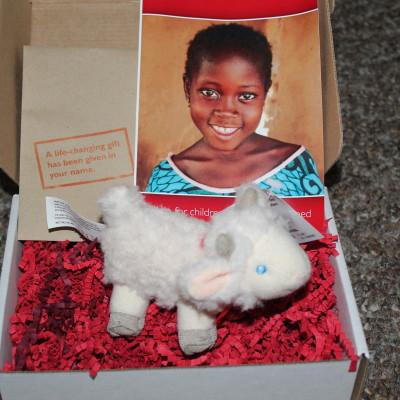 World Vision Gift Catalog *2012 Holiday gift Guide*