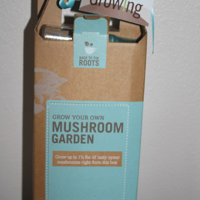 Back To The Roots Grow-Your-Own Mushroom Garden Review *2012 Holiday Gift Guide*
