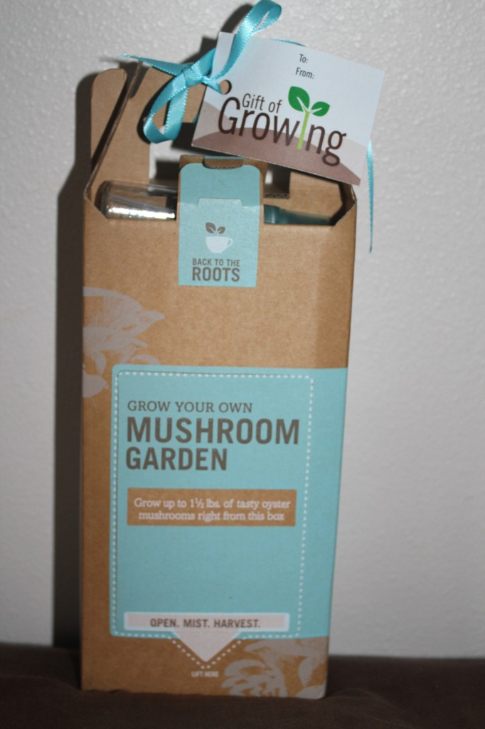 Back To The Roots Grow Your Own Mushroom Garden Review 2012 Holiday Gift Guide Livin 39 The