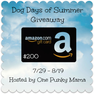 $200 Amazon Gift Card GIVEAWAY