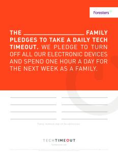 TechTimeoutPledgeForm