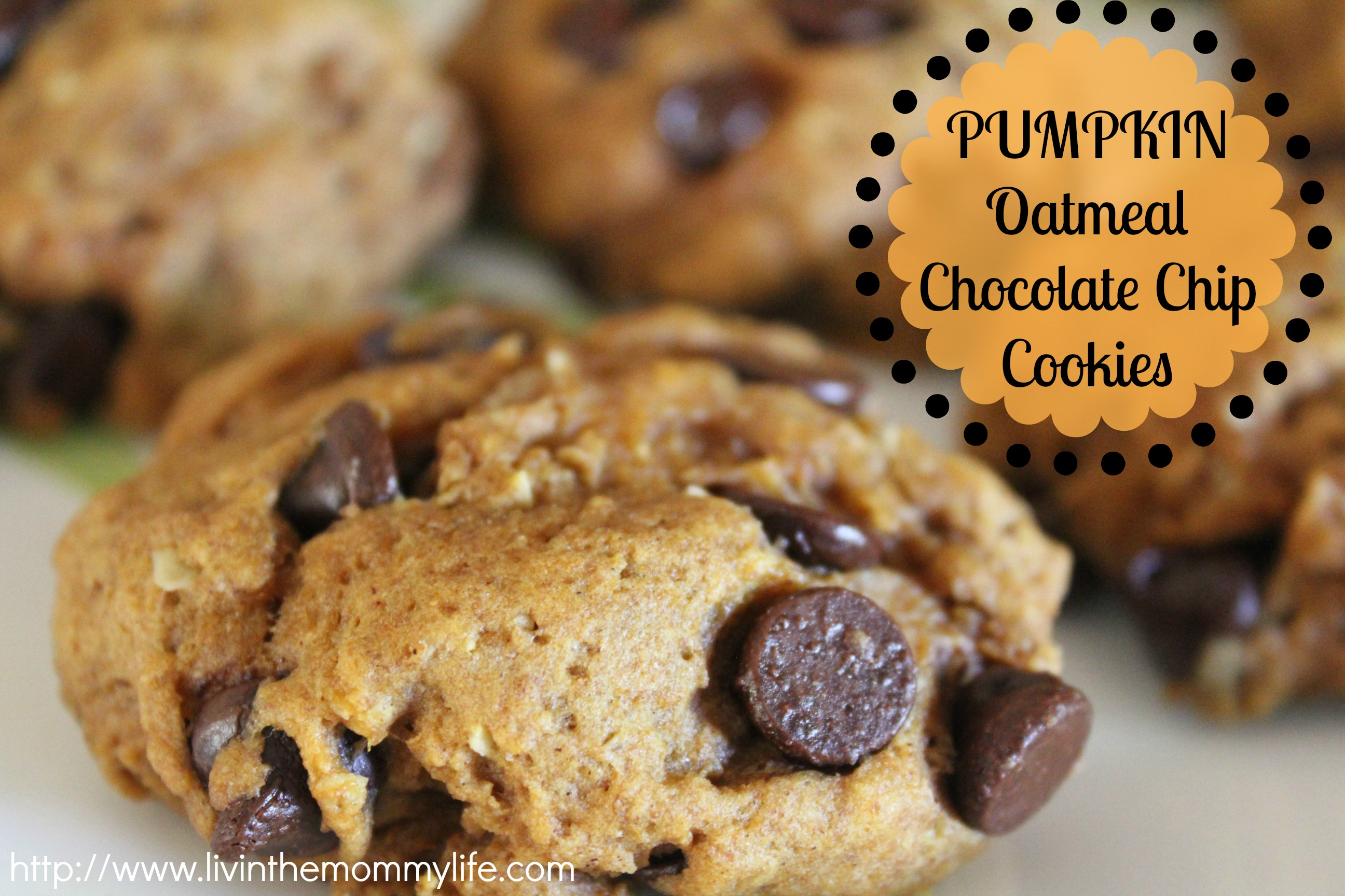 Pumpkin Oatmeal Chocolate Chip Cookies | Livin' the Mommy Life