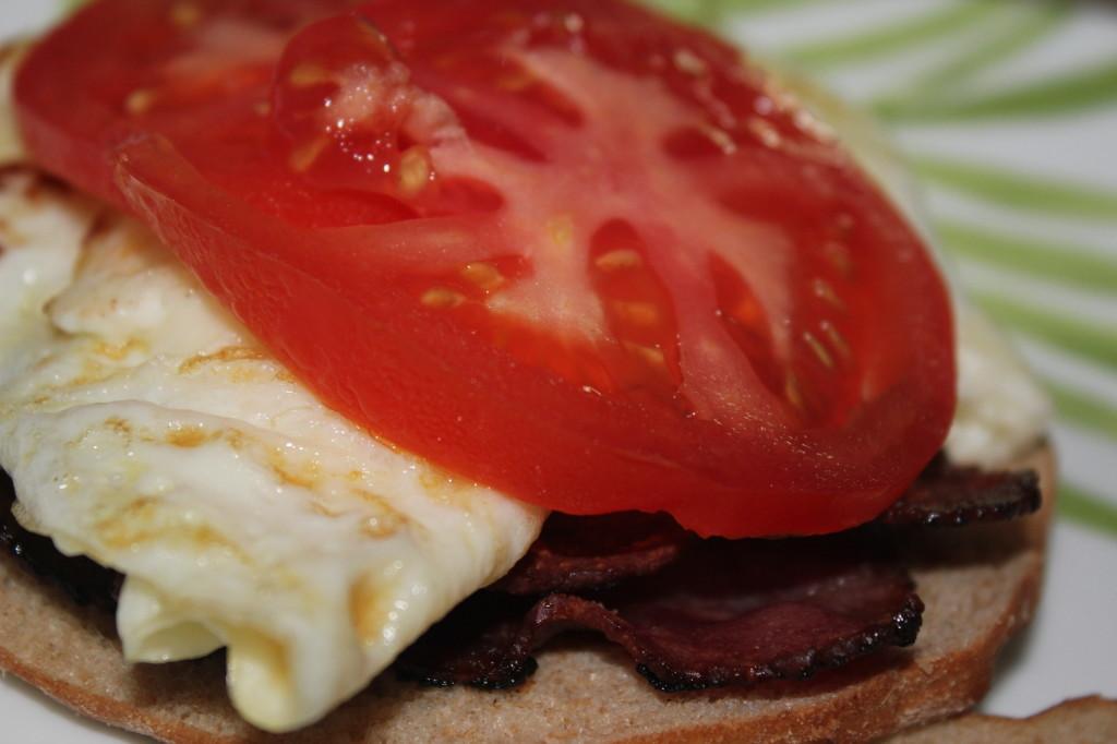 tomato sandwich egg white turkey bacon