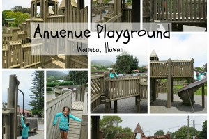 Our Day at the Park – Anuenue Playground