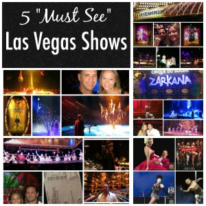 top 5 las vegas shows