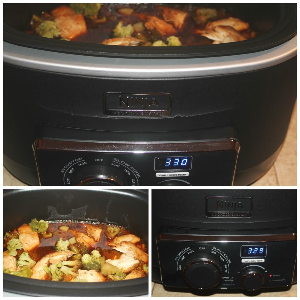 teri chicken ninja cooking system