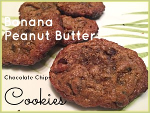 Flourless Banana Peanut Butter Chocolate Chip Cookies