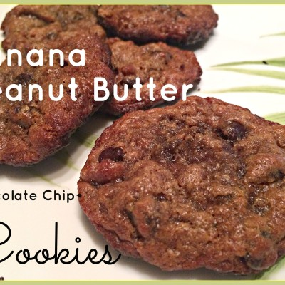 Flourless Peanut Butter Banana Chocolate Chip Cookies