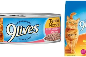9Lives' Morris the Cat Helps Cats and Humans Make the Most out of Playtime + Win a Box of 9Lives Goodies!