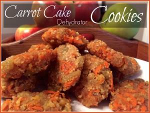 carrot cake dehydrator cookies
