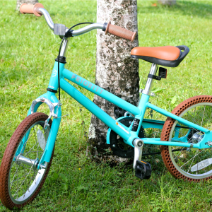 priority start turquoise kids bike