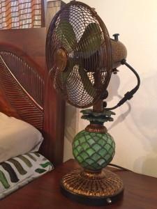 pineapple nightlight fan