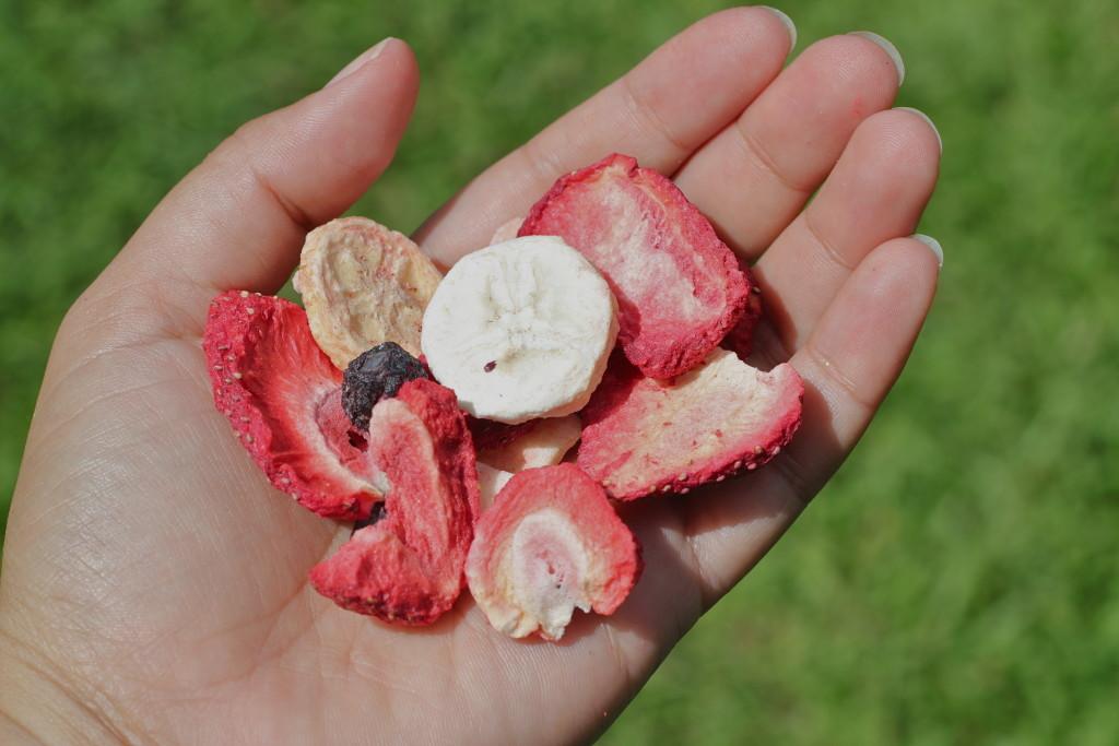 freeze dried mixed fruit crunchies