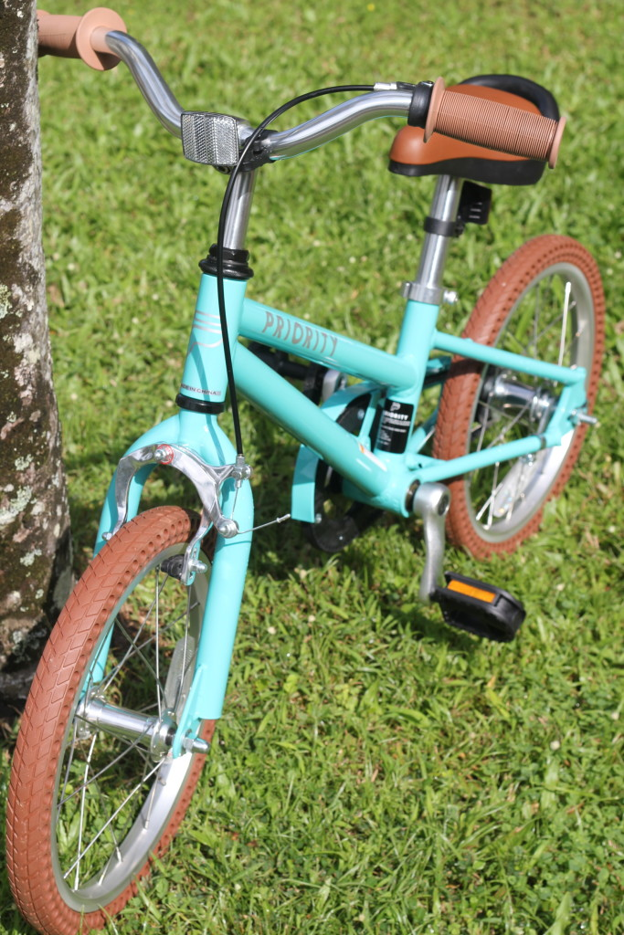 turquoise kids priority bike