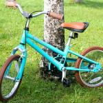 The Priority Start C/B (Coaster Brake) Bicycle – A Bike Kids LOVE To Ride