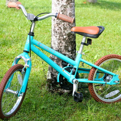 The Priority Start C/B (Coaster Brake) Bicycle – A Bike Kids LOVE To Ride