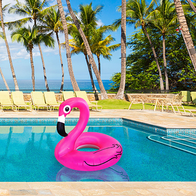 pink flamingo pool float in water