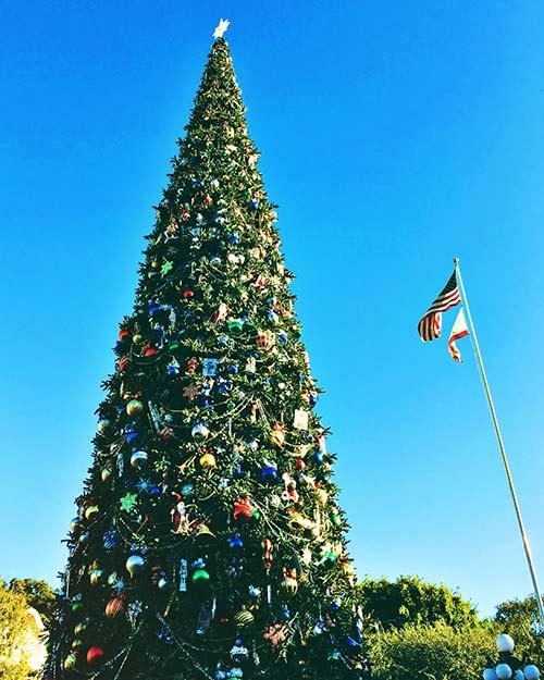 holidays-at-disneyland-christmas-tree
