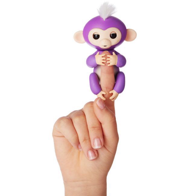 purple fingerlings baby monkey mia